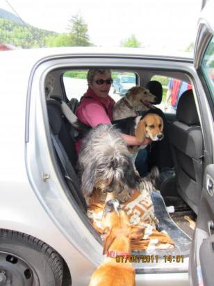 En voiture pour la rando