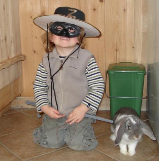 Pallino et Zorro